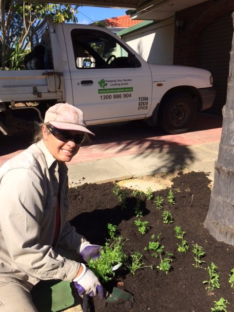 Planting services Perth